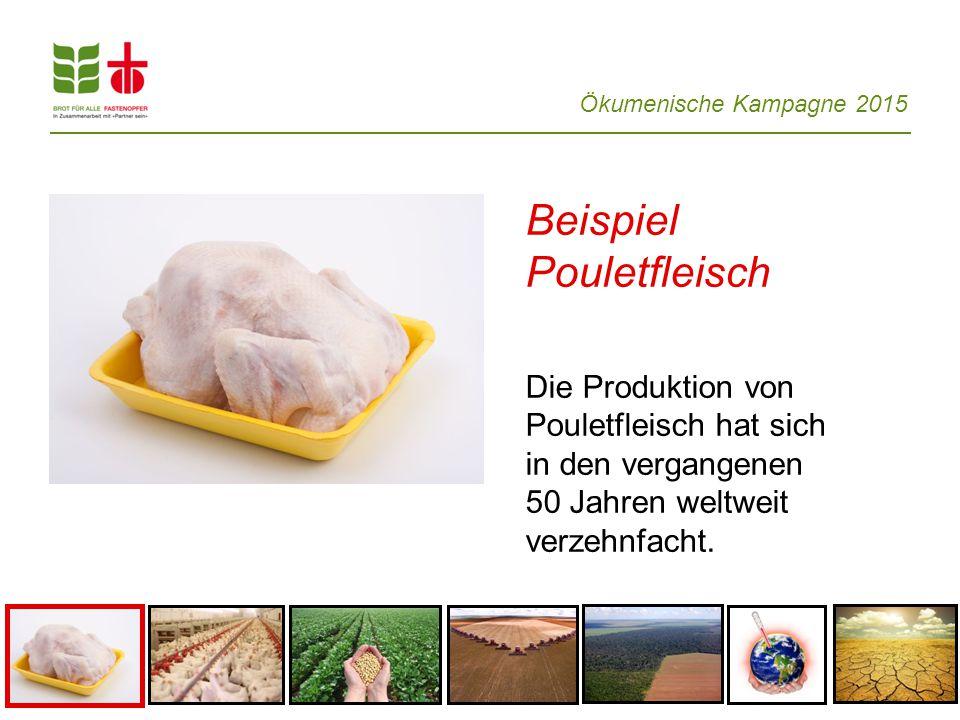 Beispiel Pouletfleisch Die Produktion von Pouletfleisch hat sich in den vergangenen 50 Jahren weltweit verzehnfacht.