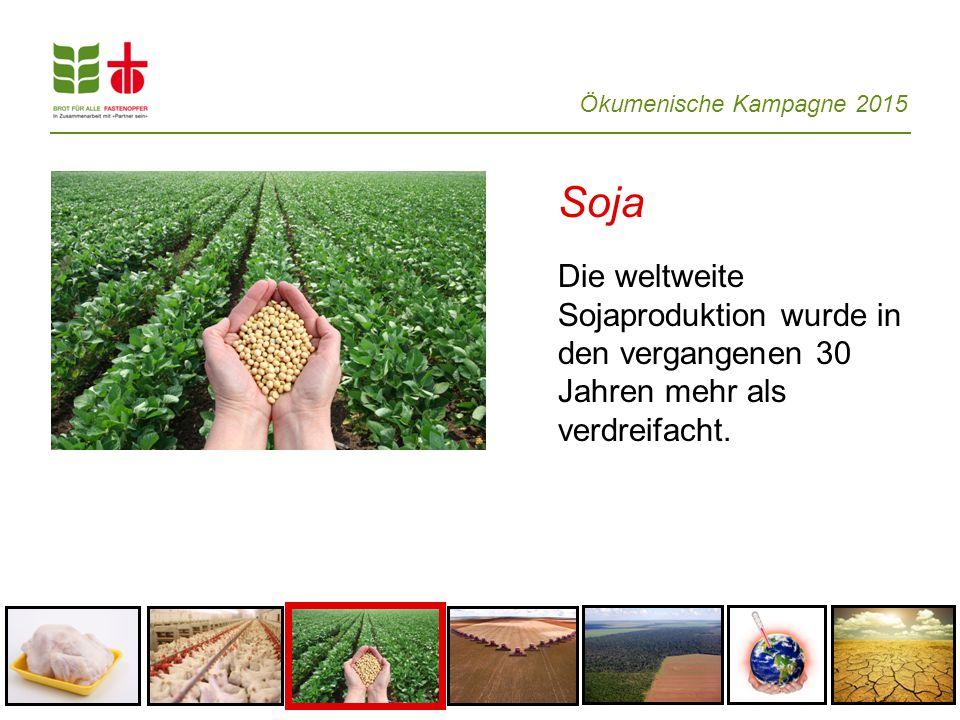 Ökumenische Kampagne 2015 Soja Die weltweite Sojaproduktion wurde in den vergangenen 30 Jahren mehr als verdreifacht.