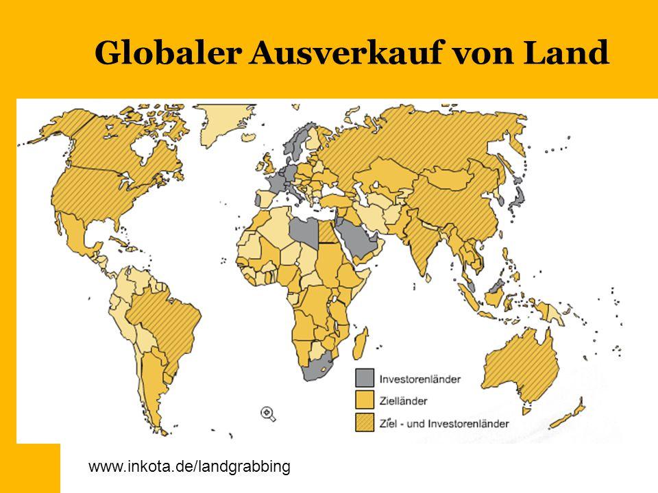 Globaler Ausverkauf von Land www.inkota.de/landgrabbing