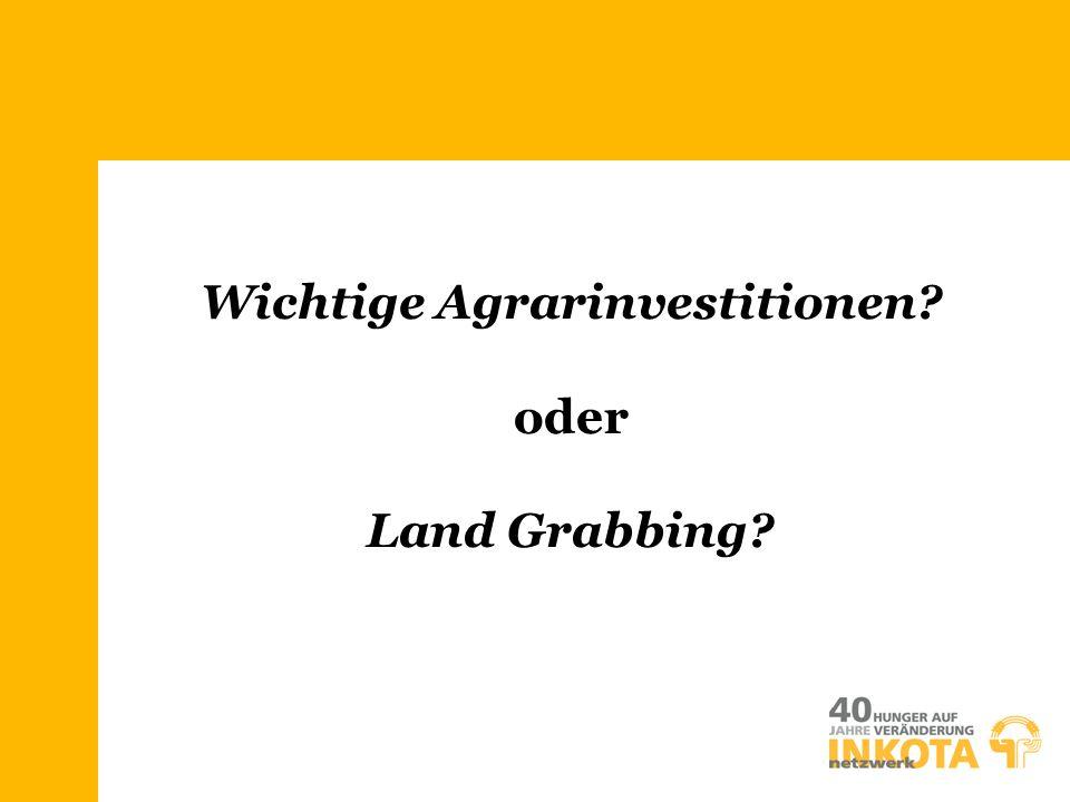 Wichtige Agrarinvestitionen? oder Land Grabbing?