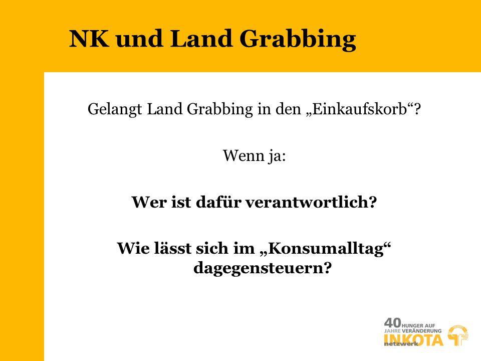 """NK und Land Grabbing Gelangt Land Grabbing in den """"Einkaufskorb""""? Wenn ja: Wer ist dafür verantwortlich? Wie lässt sich im """"Konsumalltag"""" dagegensteue"""