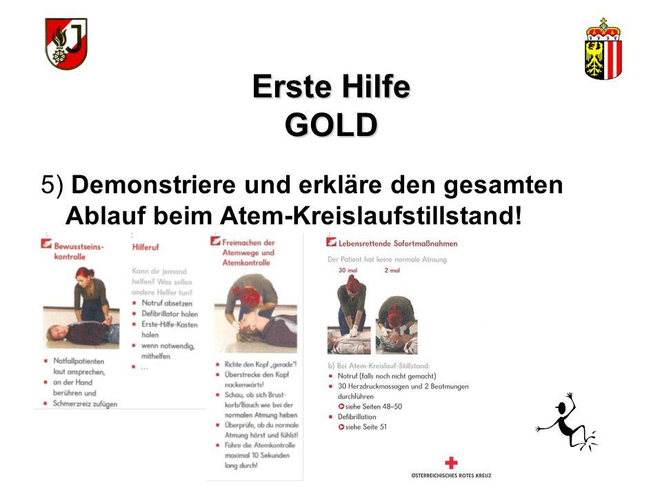 Erste Hilfe GOLD Selbstschutz beachten Stromkreis unterbrechen (Stecker ziehen, Sicherung herausdrehen) Nach der Rettung lebensrettende Sofortmaßnahme