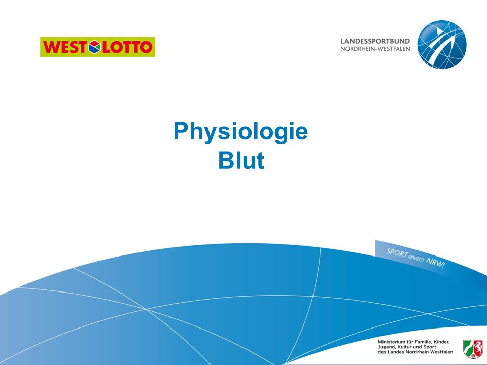 Physiologie Blut 