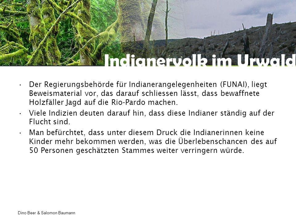 Dino Beer & Salomon Baumann Indianervolk im Urwald Der Regierungsbehörde für Indianerangelegenheiten (FUNAI), liegt Beweismaterial vor, das darauf schliessen lässt, dass bewaffnete Holzfäller Jagd auf die Rio-Pardo machen.