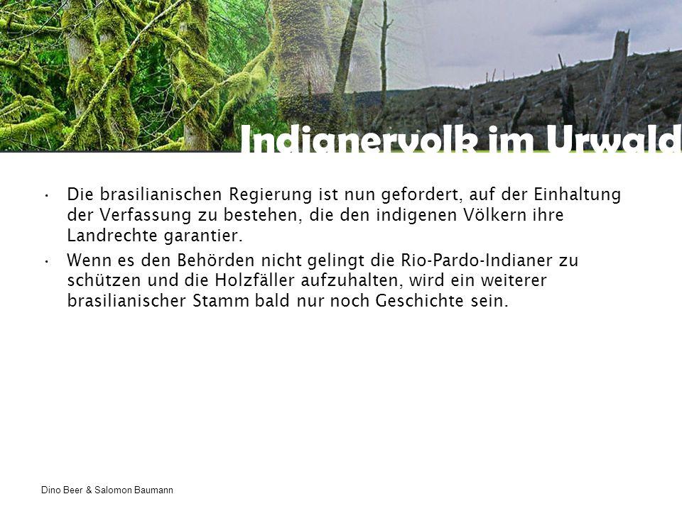 Dino Beer & Salomon Baumann Indianervolk im Urwald Die brasilianischen Regierung ist nun gefordert, auf der Einhaltung der Verfassung zu bestehen, die den indigenen Völkern ihre Landrechte garantier.