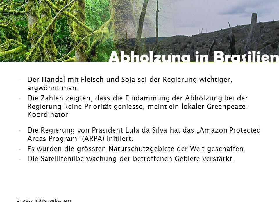 Dino Beer & Salomon Baumann Abholzung in Brasilien Der Handel mit Fleisch und Soja sei der Regierung wichtiger, argwöhnt man.