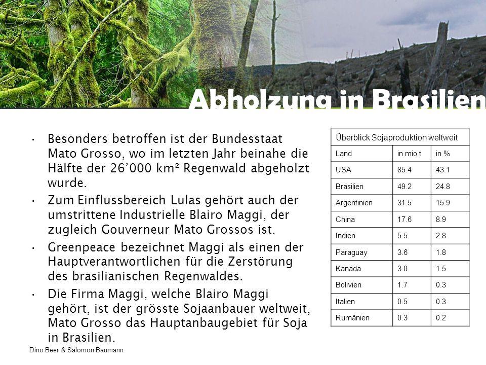 Dino Beer & Salomon Baumann Abholzung in Brasilien Besonders betroffen ist der Bundesstaat Mato Grosso, wo im letzten Jahr beinahe die Hälfte der 26'000 km² Regenwald abgeholzt wurde.