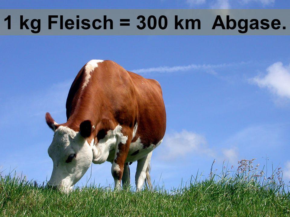 Für die Herstellung von 1 Liter Milch braucht man 900 Liter Wasser.