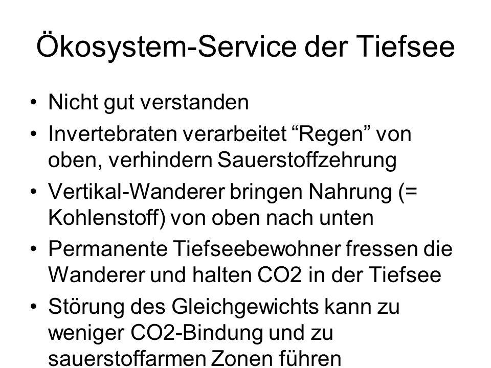 """Ökosystem-Service der Tiefsee Nicht gut verstanden Invertebraten verarbeitet """"Regen"""" von oben, verhindern Sauerstoffzehrung Vertikal-Wanderer bringen"""