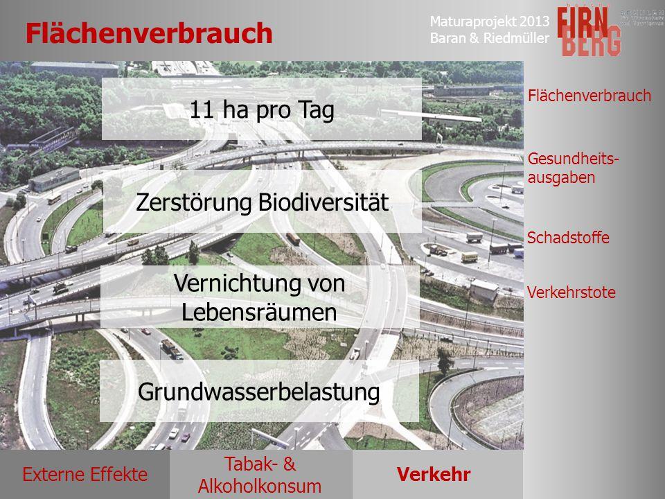 Maturaprojekt 2013 Baran & Riedmüller Externe EffekteVerkehr Tabak- & Alkoholkonsum Flächenverbrauch Gesundheits- ausgaben Schadstoffe Verkehrstote Fl