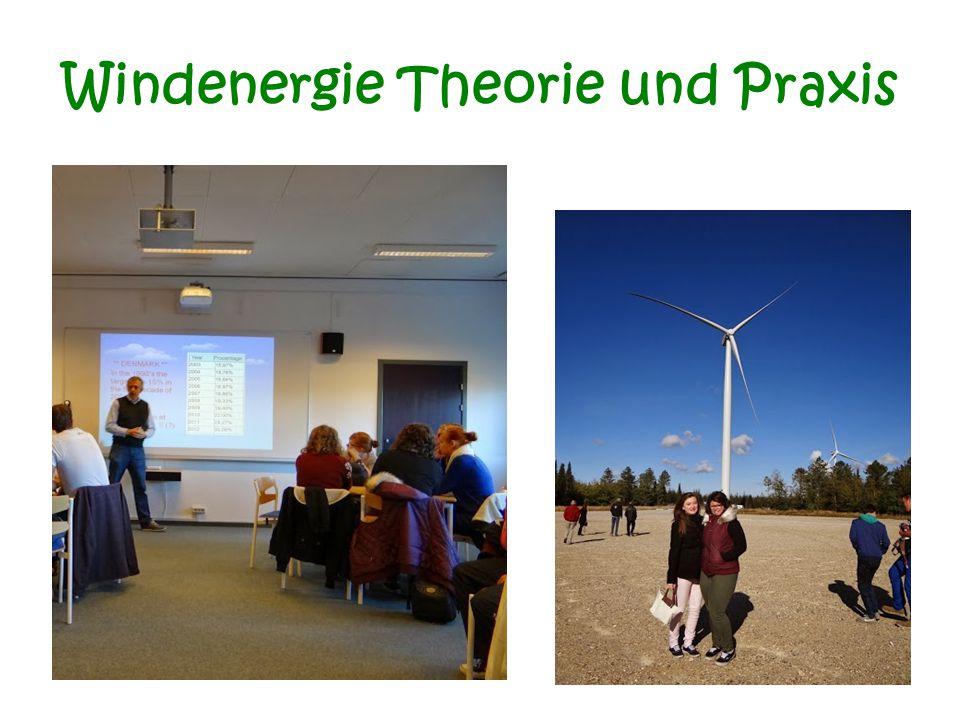 Windenergie Theorie und Praxis