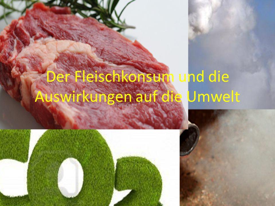Der Fleischkonsum und die Auswirkungen auf die Umwelt