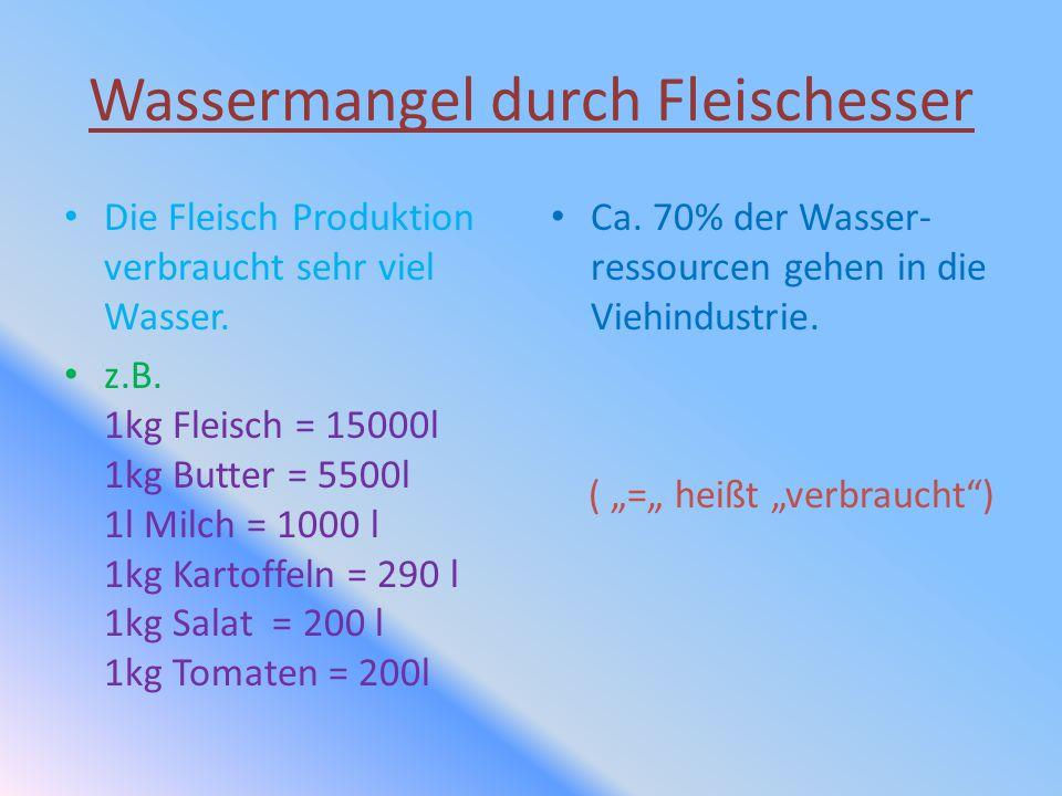 Wassermangel durch Fleischesser Die Fleisch Produktion verbraucht sehr viel Wasser. z.B. 1kg Fleisch = 15000l 1kg Butter = 5500l 1l Milch = 1000 l 1kg