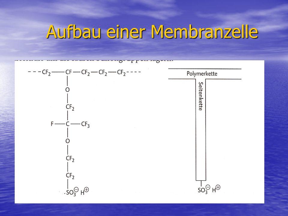 Aufbau einer Membranzelle