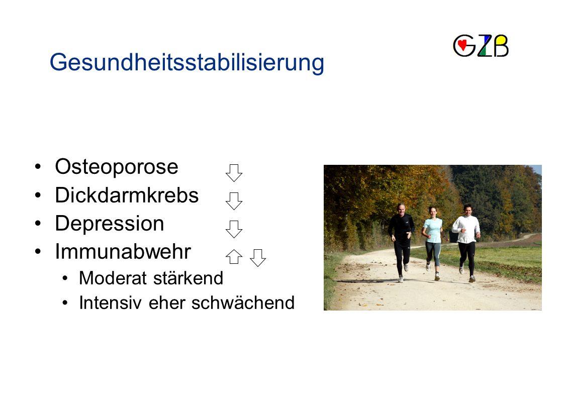 Vergleich von Laufband-, Fahrrad- und Leiterergometer mit Feuerwehrmännern Masterarbeit 2008 ISSW Uni Basel Eva Hollosi