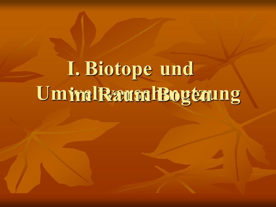 und Umweltverschmutzung und Umweltverschmutzung BiotopeI. im Raum Bogen