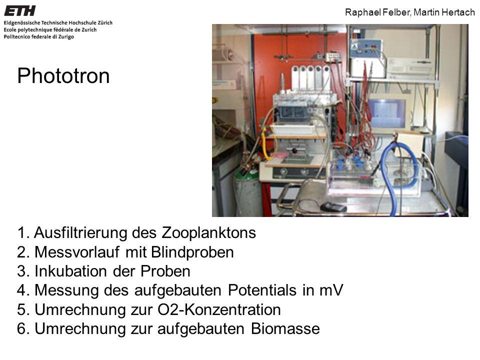 Raphael Felber, Martin Hertach Berechnung der O 2 -Konzentration Mittelwert aus Vorlauf in mV O 2 -Konzentration ist maximal 10.92 mgL -1 Mittels 3-Satz gemessene Werte umrechnen Bsp: 1045.06 mV entspricht 10.92 mgL -1 1077.19 mV  11.26 mgL -1