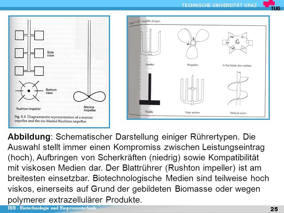 IBB - Biotechnologie und Bioprozesstechnik 25 Abbildung: Schematischer Darstellung einiger Rührertypen. Die Auswahl stellt immer einen Kompromiss zwis