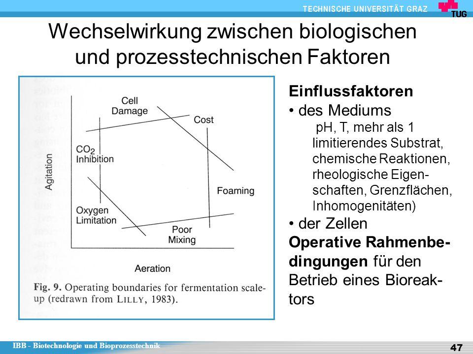 IBB - Biotechnologie und Bioprozesstechnik 47 Wechselwirkung zwischen biologischen und prozesstechnischen Faktoren Einflussfaktoren des Mediums pH, T,