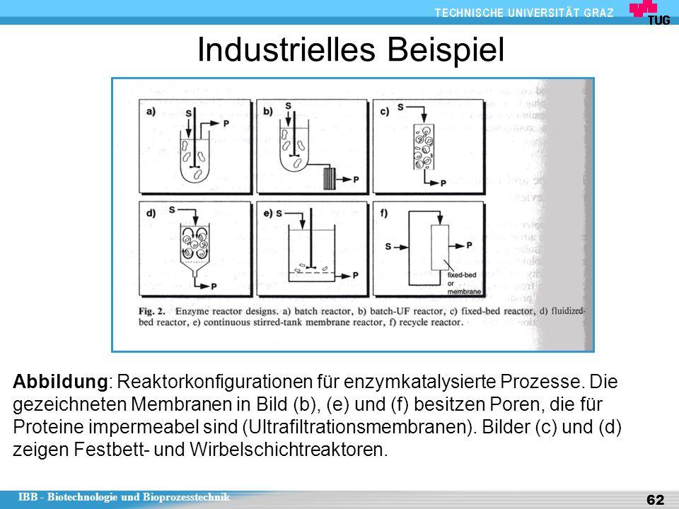 IBB - Biotechnologie und Bioprozesstechnik 62 Industrielles Beispiel Abbildung: Reaktorkonfigurationen für enzymkatalysierte Prozesse. Die gezeichnete