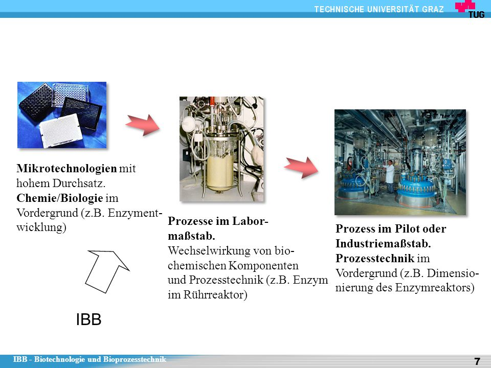 IBB - Biotechnologie und Bioprozesstechnik 7 Mikrotechnologien mit hohem Durchsatz. Chemie/Biologie im Vordergrund (z.B. Enzyment- wicklung) Prozesse