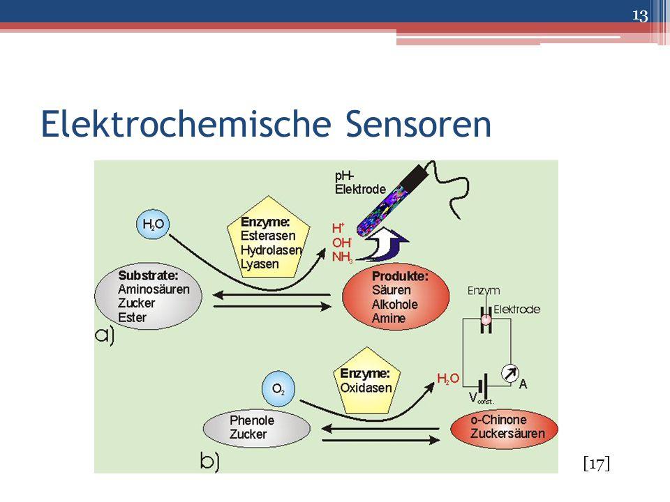 Elektrochemische Sensoren 13 [17]