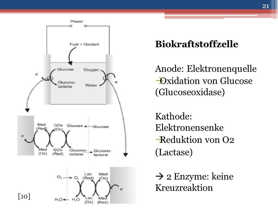 Biokraftstoffzelle Anode: Elektronenquelle  Oxidation von Glucose (Glucoseoxidase) Kathode: Elektronensenke  Reduktion von O2 (Lactase)  2 Enzyme: