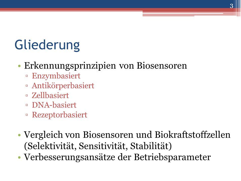 Gliederung Erkennungsprinzipien von Biosensoren ▫Enzymbasiert ▫Antikörperbasiert ▫Zellbasiert ▫DNA-basiert ▫Rezeptorbasiert Vergleich von Biosensoren