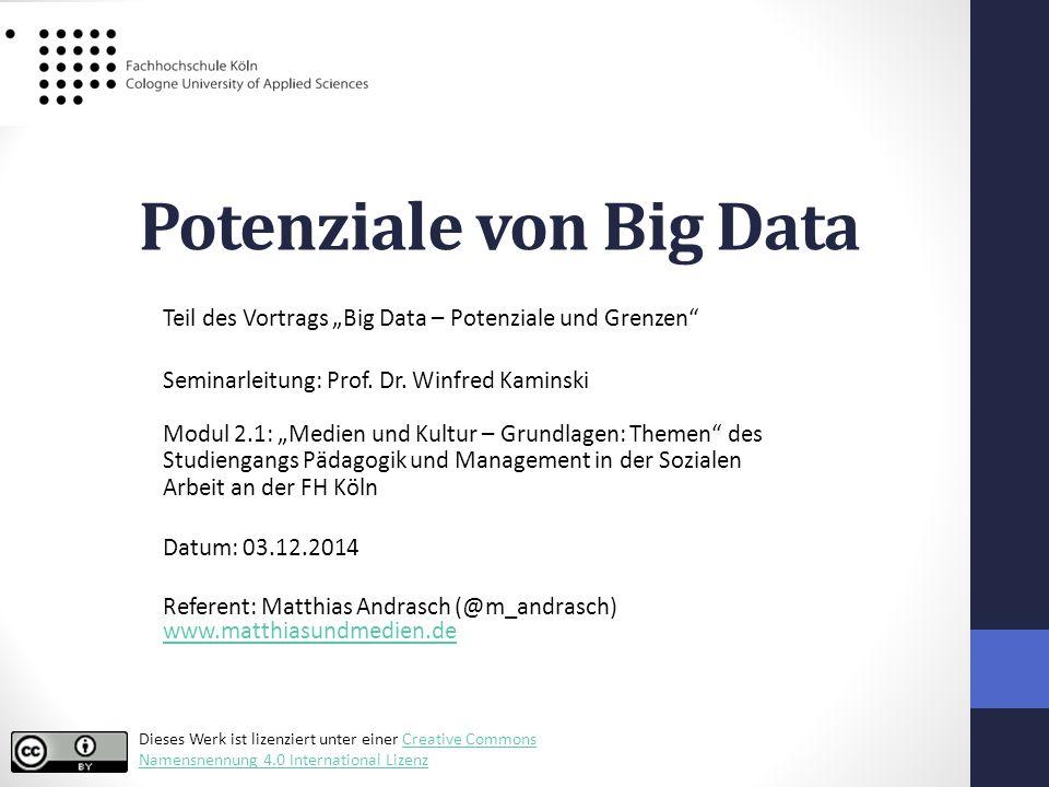 """Potenziale von Big Data Teil des Vortrags """"Big Data – Potenziale und Grenzen Seminarleitung: Prof."""