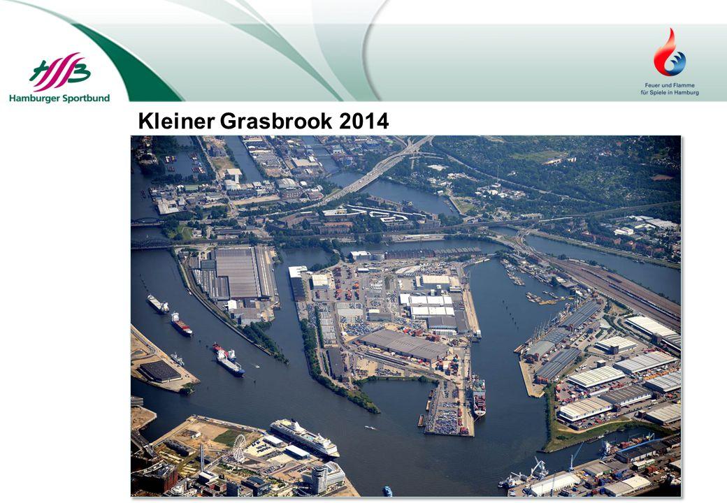 Kleiner Grasbrook 2014