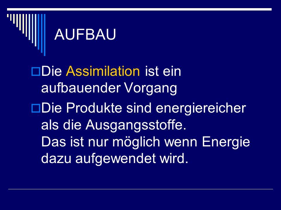 AUFBAU  Die Assimilation ist ein aufbauender Vorgang  Die Produkte sind energiereicher als die Ausgangsstoffe. Das ist nur möglich wenn Energie dazu