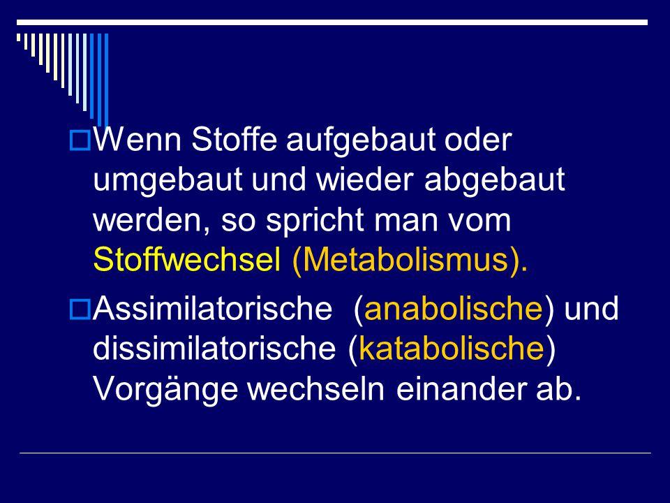  Wenn Stoffe aufgebaut oder umgebaut und wieder abgebaut werden, so spricht man vom Stoffwechsel (Metabolismus).  Assimilatorische (anabolische) und