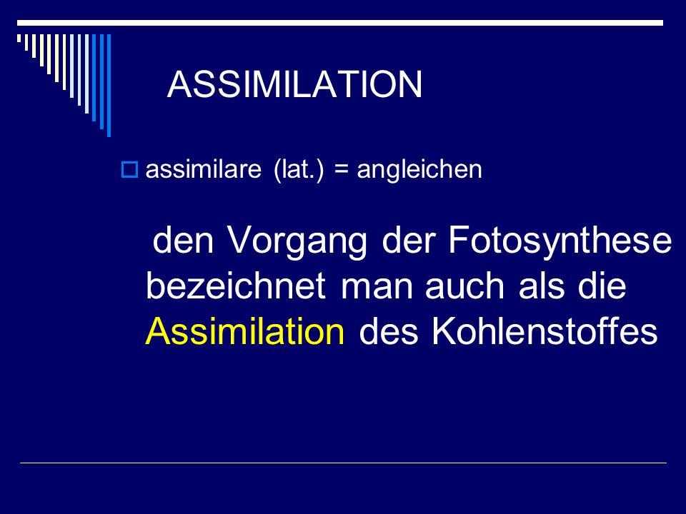 ASSIMILATION  assimilare (lat.) = angleichen den Vorgang der Fotosynthese bezeichnet man auch als die Assimilation des Kohlenstoffes