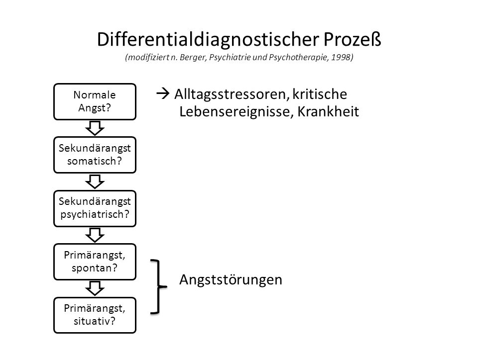 Differentialdiagnostischer Prozeß (modifiziert n.