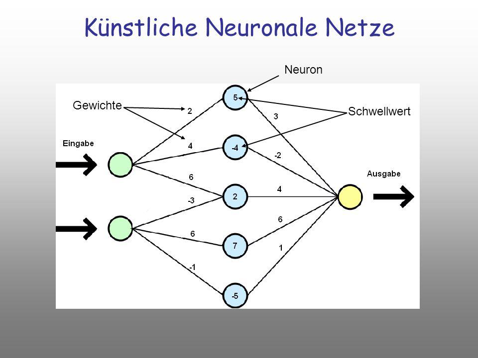 Schwellwert Gewichte Künstliche Neuronale Netze Neuron