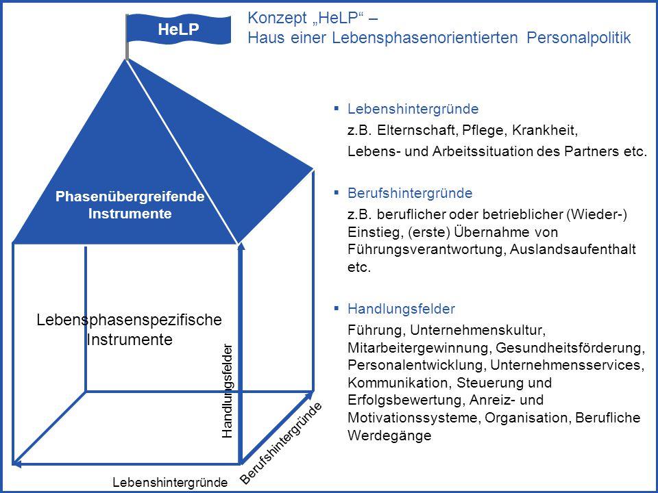 S9  Lebenshintergründe z.B. Elternschaft, Pflege, Krankheit, Lebens- und Arbeitssituation des Partners etc.  Berufshintergründe z.B. beruflicher ode