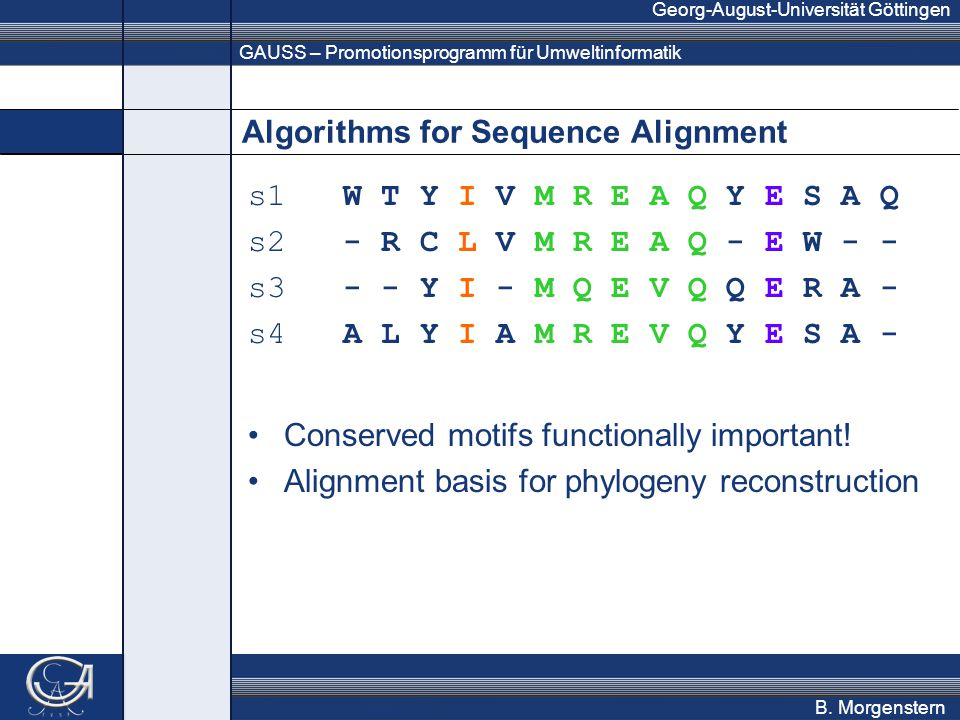 GAUSS – Promotionsprogramm für Umweltinformatik Georg-August-Universität Göttingen B. Morgenstern Algorithms for Sequence Alignment s1 W T Y I V M R E