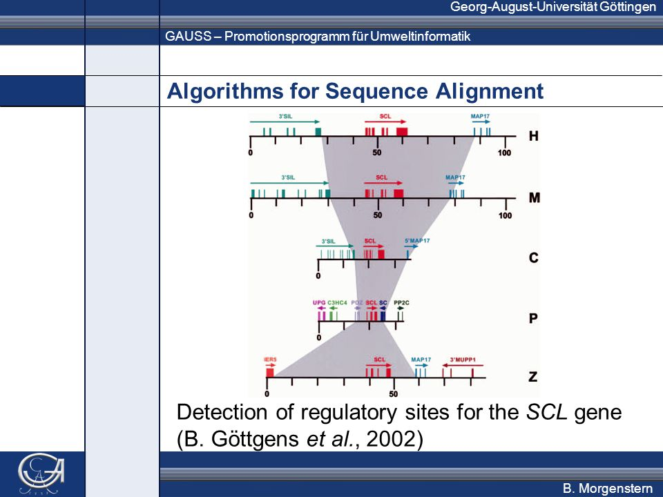 GAUSS – Promotionsprogramm für Umweltinformatik Georg-August-Universität Göttingen B. Morgenstern Algorithms for Sequence Alignment Detection of regul