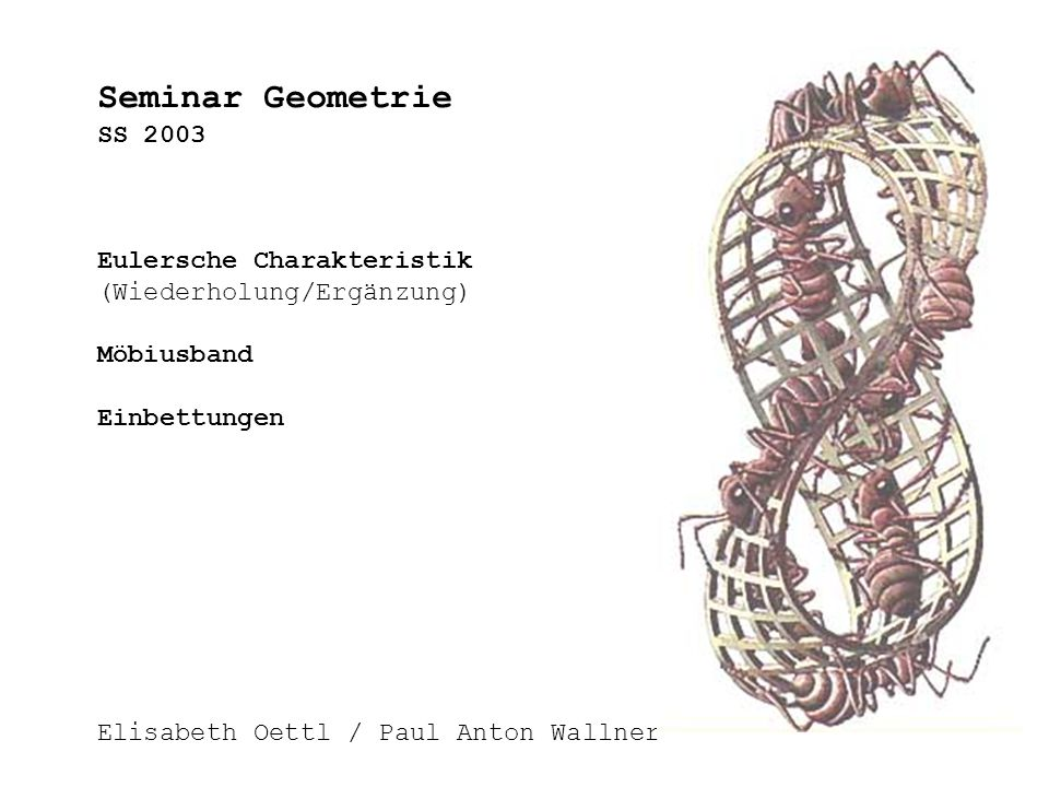 Seminar Geometrie SS 2003 Eulersche Charakteristik (Wiederholung/Ergänzung) Möbiusband Einbettungen Elisabeth Oettl / Paul Anton Wallner