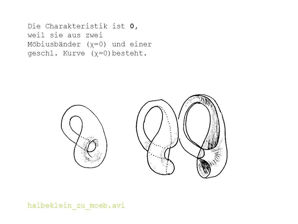Die Charakteristik ist 0, weil sie aus zwei Möbiusbänder (χ=0) und einer geschl. Kurve (χ=0)besteht. halbeklein_zu_moeb.avi