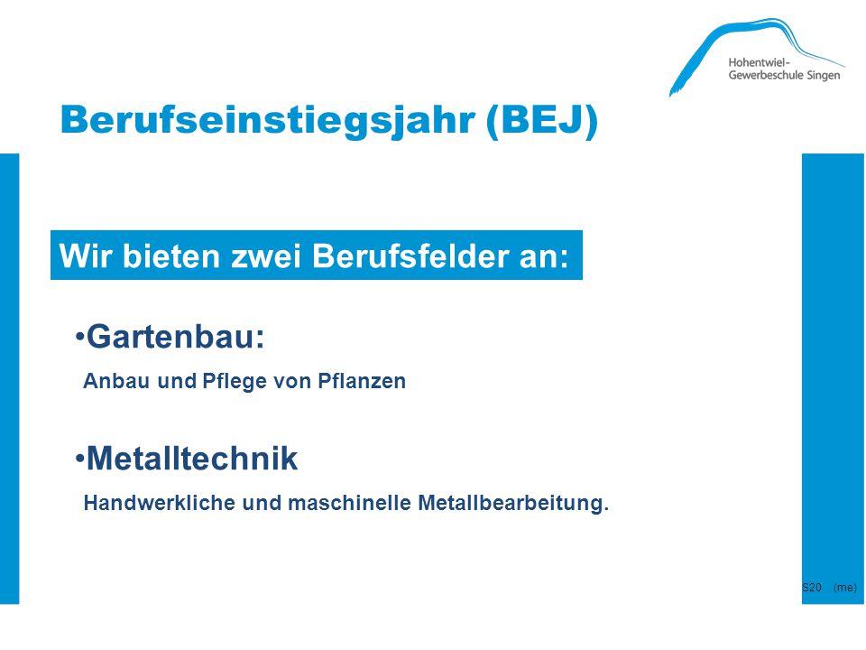 Berufseinstiegsjahr (BEJ) Wir bieten zwei Berufsfelder an: Gartenbau: Anbau und Pflege von Pflanzen Metalltechnik Handwerkliche und maschinelle Metall
