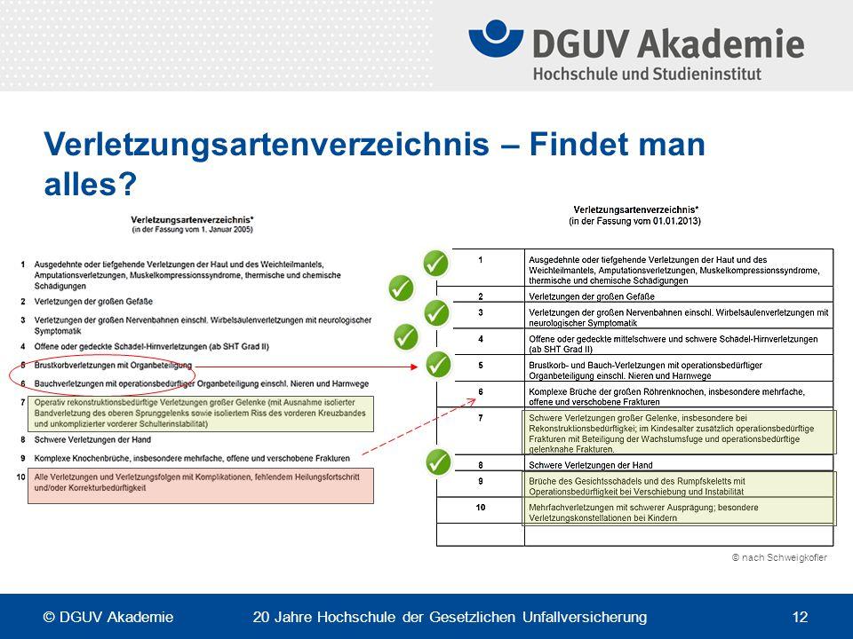 Verletzungsartenverzeichnis – Findet man alles? © nach Schweigkofler © DGUV Akademie 20 Jahre Hochschule der Gesetzlichen Unfallversicherung 12
