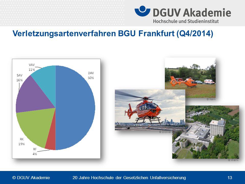 Verletzungsartenverfahren BGU Frankfurt (Q4/2014) © Dickler © Kern © Wank © DGUV Akademie 20 Jahre Hochschule der Gesetzlichen Unfallversicherung 13