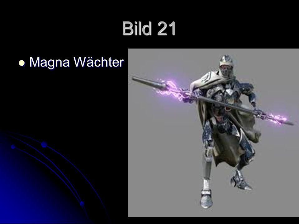 Bild 21 Magna Wächter Magna Wächter