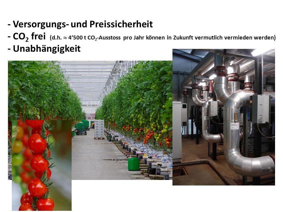 - Versorgungs- und Preissicherheit - CO 2 frei (d.h.  4'500 t CO 2 -Ausstoss pro Jahr können in Zukunft vermutlich vermieden werden) - Unabhängigkeit