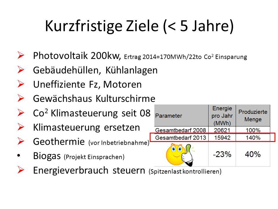 Kurzfristige Ziele (< 5 Jahre)  Photovoltaik 200kw, Ertrag 2014=170MWh/22to Co 2 Einsparung  Gebäudehüllen, Kühlanlagen  Uneffiziente Fz, Motoren 
