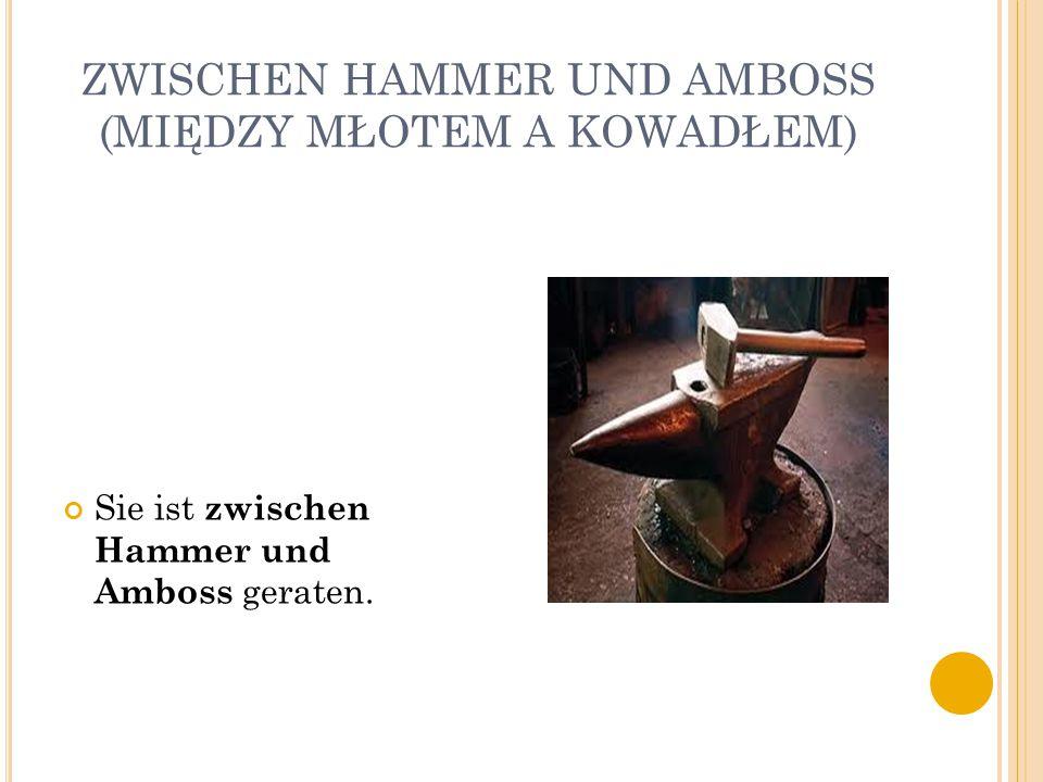 ZWISCHEN HAMMER UND AMBOSS (MIĘDZY MŁOTEM A KOWADŁEM) Sie ist zwischen Hammer und Amboss geraten.