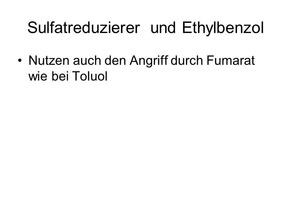 Sulfatreduzierer und Ethylbenzol Nutzen auch den Angriff durch Fumarat wie bei Toluol