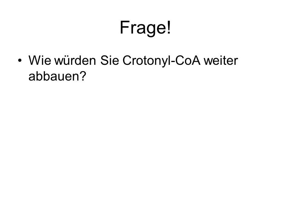 Frage! Wie würden Sie Crotonyl-CoA weiter abbauen?