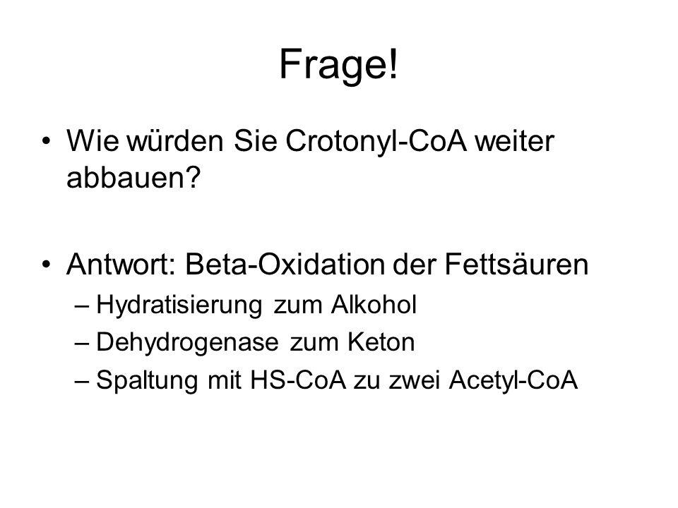 Frage! Wie würden Sie Crotonyl-CoA weiter abbauen? Antwort: Beta-Oxidation der Fettsäuren –Hydratisierung zum Alkohol –Dehydrogenase zum Keton –Spaltu